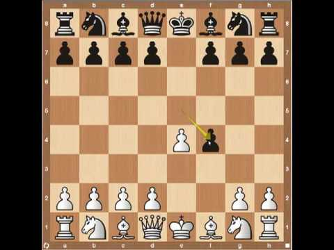 Chess Openings- The King's Gambit