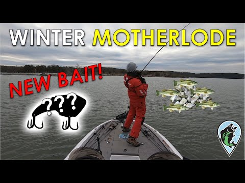 Winter Bass In 30ft Rock Piles With Blade Bait! | Offshore Winter Bass Fishing Table Rock Lake