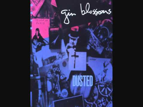Gin Blossoms - Hey Jealousy (