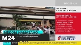 Туристы пожаловались на очереди на заселение в отелях Сочи - Москва 24