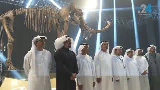 أبوظبي تحتضن الماموث الصوفي المنقرض منذ 15 ألف سنة