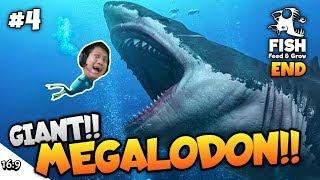 Berburu Hiu Prasejarah Megalodon!!!! Feed And Grow Fish Part 4 Sub Indo ~bisa Ke Darat??!!!