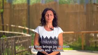 Зоологическа градина София - нов официален клип / Sofia Zoo - new official video