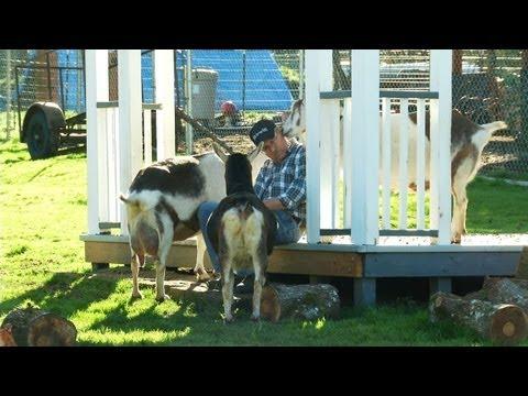 An Urban Goat Farm: Abita Springs Farm