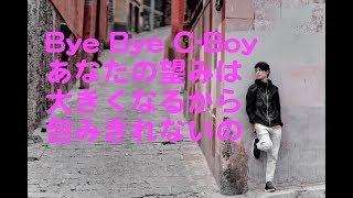 ナイアガラ・トライアングル - Bye Bye C-Boy