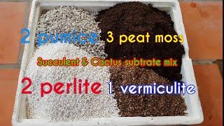 Cách trộn đất trồng xương rồng và cây mọng nước   Succulent & Cactus soil mix