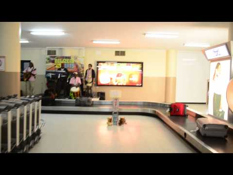 Live Music at Philip S.W. Goldson International Airport in Belize!