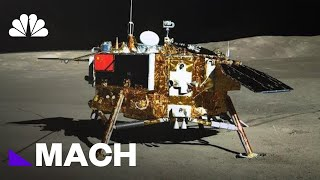 China's Experiment Proves Life Is Possible On The Moon | Mach | NBC News
