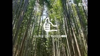홍T의 고3 수능특강 영어 원격수업용 수업자료 002(…