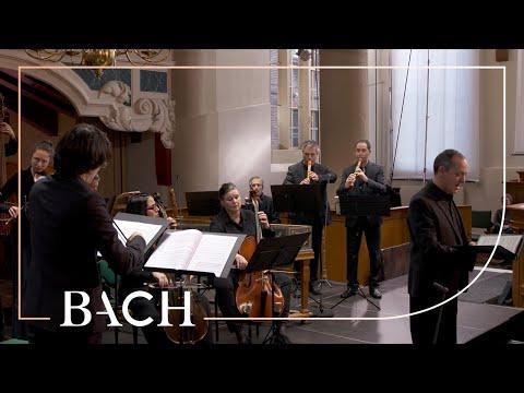 Bach - Cantata Jesus schläft, was soll ich hoffen BWV 81 - Sato | Netherlands Bach Society