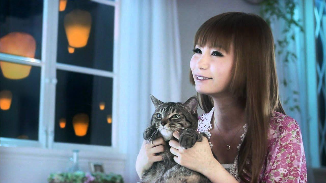 猫と一緒に灯篭を見つめる中川翔子