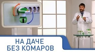 Защита от комаров на всю ночь, средство Москитол для всей семьи