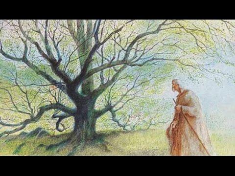 L'homme qui plantait des arbres (Jean Giono / Dit par Philippe Noiret)