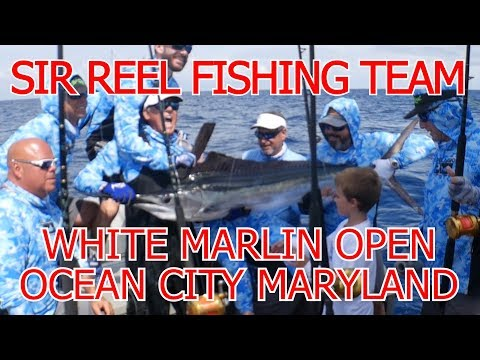 Sir Reel Fishing Team White Marlin Open In Action On The Water....Tight Lines, Millions In Sight!