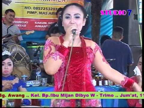 Diana Areva Music
