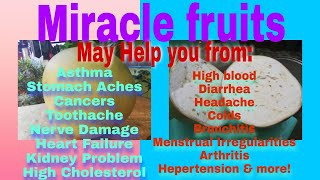 HOW TO MAKE JUICE BERRY IN MIRACLE FRUIT
