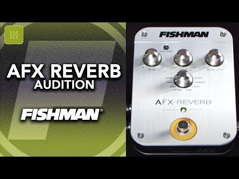 Fishman AFX Reverb Audition