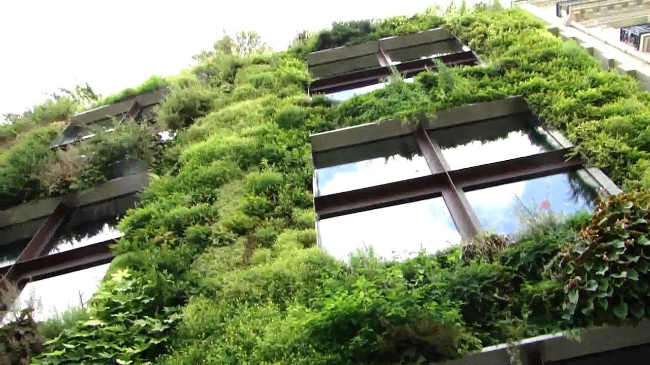 Mur végétal PARIS MUSEE QUAI BRANLY - YouTube