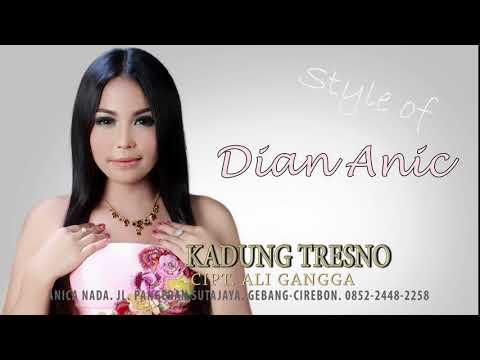 Free Download Dian Anic 2018 - Kadung Tresno Mp3 dan Mp4