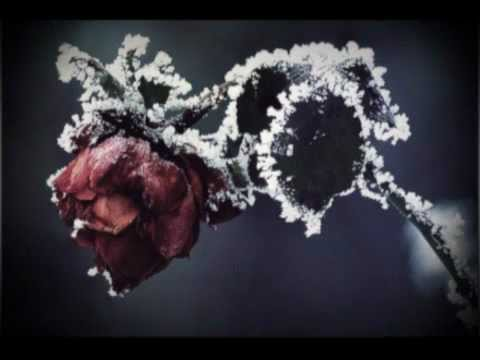 Frozen Ocean - And Hoarfrost Blooms Henceforth