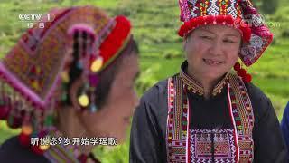 《中华民族》 20191217 南岭云水间 上集| CCTV