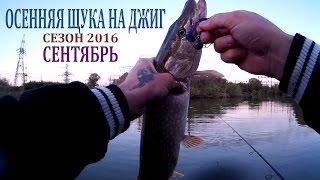 Рыбалка на канале. Осенняя щука на джиг. Сентябрь. Сезон 2016