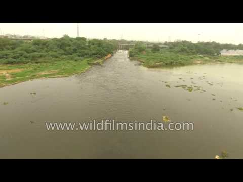 Water pollution in India: aerial view of Yamuna river at Wazirabad