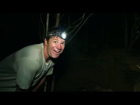 Rare Fossa sighting in Madagascar - Deadly 60 - Series 2 - BBC