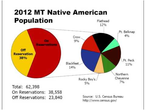 More than a Vision - Native American Domestic Violence Fatality Review