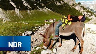 Auszeit in den Bergen - ohne Smartphone | 7 Tage... auf der Alm | Doku | NDR