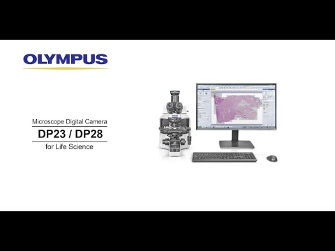 DP23 and DP28 Microscope Digital Camera
