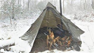 4 Days WINTER CAMṖING in Blizzard With My Dog, Survival, Off Grid, Nature Movie, Snowstorm Bushcraft