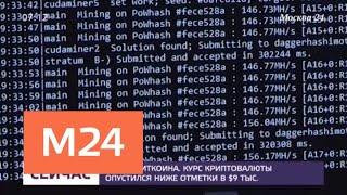 Курс биткойна упал ниже 9 тысяч долларов - Москва 24