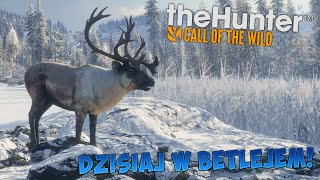 ŚPIEWANIE KOLĘD I ZABIJANIE RENIFERÓW (theHunter: Call of the Wild #18)