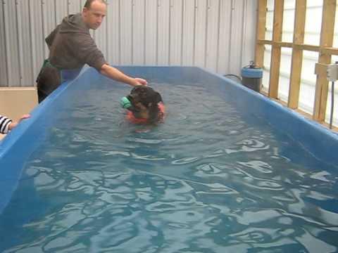 Zoe the Rottweiler enjoying her swim at Dog Swim Spa