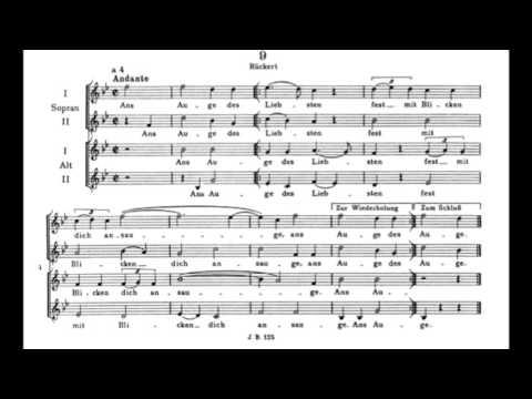Brahms - 13 Canons, Op. 113 (score)