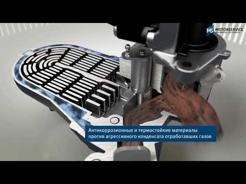 Функция радиатора системы EGR (3D анимация) - Motorservice Group