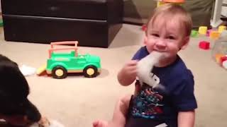 Baby and Dog are Best Friends Funny Fails Baby Video