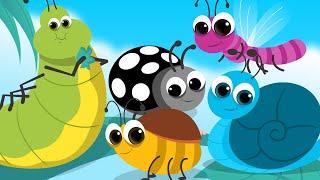 Bugs Song | Schoolies | Nursery Rhymes For Children | Kids Song