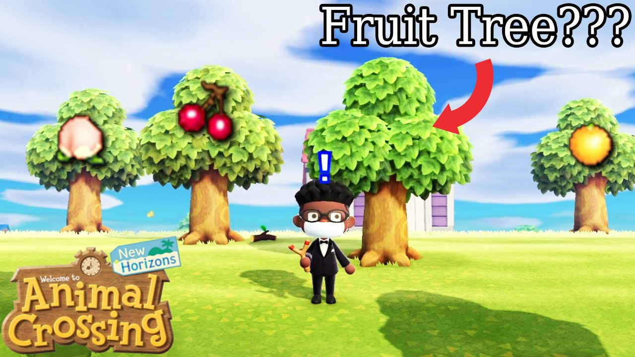 How To Tell The Difference Between A Fruit Tree And A Regular Tree When All Fruit Is Gone Acnh Youtube
