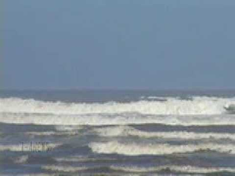 Ocean Shores Surf On A Sunny Day!