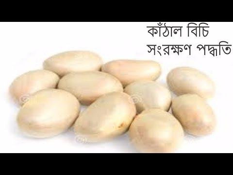 সংরক্ষণ | সবজি সংরক্ষণ পদ্ধতি । কাঁঠাল বিচি  সংরক্ষণ পদ্ধতি  । ranna banna bangladesh