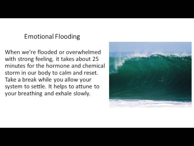 Calming Your Nervous System Emotional Flooding