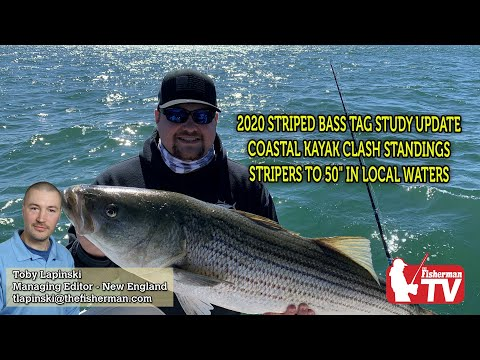 June 4, 2020 New England Fishing Report
