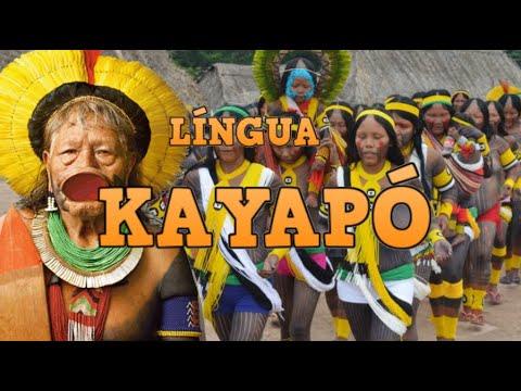 Língua Kayapó (Mebengokre)