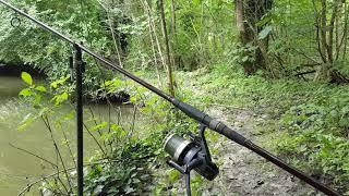 """pêche à la Carpe """"rivière départ violent"""""""
