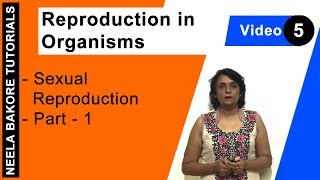 Reproduction in Organisms - Sexual Reproduction - Part - 1