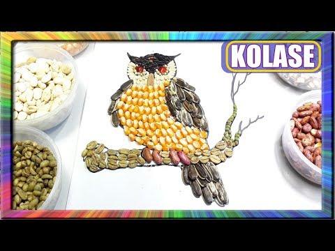 Melukis Kolase Burung Hantu Dengan Biji Bijian Learn Colors For Children Owl