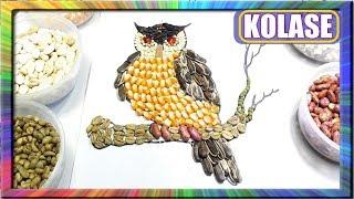 Melukis kolase Burung Hantu dengan Biji bijian | Learn colors for children owl