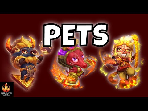 NEW UPDATED Castle Clash Hero Pets Traits Teams Combos